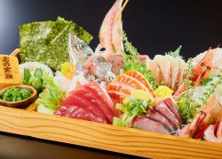 dish-sashimi